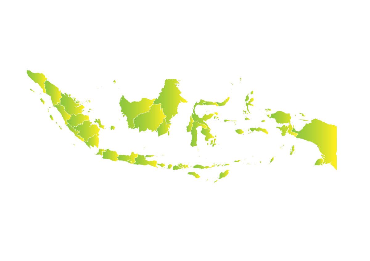 Jaringan Demokrasi Indonesia (JaDI)